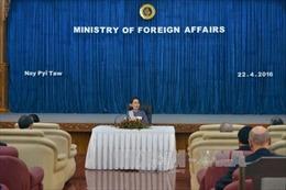 NLD để ngỏ khả năng trưng cầu dân ý về một hiến pháp mới