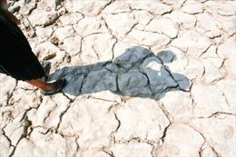 Campuchia mở chiến dịch đưa nước đến người dân vùng hạn