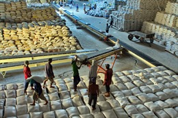 Thái Lan xả kho gạo: Nghe ngóng, theo sát thị trường