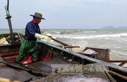 Hà Tĩnh phân tích mẫu nước biển đục màu