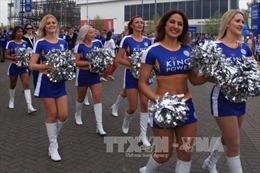 Cổ động viên Leicester City lâng lâng trong chiến thắng