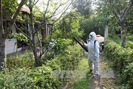 Khoanh vùng nơi người Hàn Quốc nhiễm virus Zika ở Việt Nam