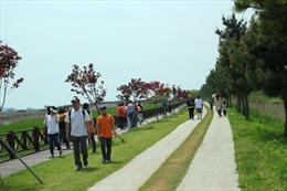 Hòa mình với thiên nhiên tại Jeollanam-do