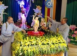 Thượng tọa Thích Đức Thiện: Đồng hành cùng dân tộc là bản sắc của Phật giáo Việt Nam