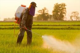 FAO và WHO kết luận Glyphosate không có nguy cơ gây ung thư
