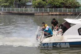 Cơ bản xử lý xong số cá chết trên kênh Nhiêu Lộc