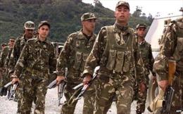 Algeria tiêu diệt và bắt giữ 38 phần tử khủng bố