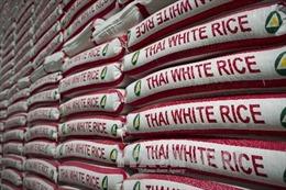 Giá gạo Thái Lan xuất khẩu tăng mạnh vì hạn hán