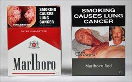 Bao thuốc lá trơn - hi vọng mới chống khói thuốc