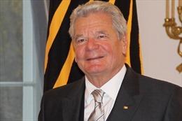 Tổng thống Đức có tiếp tục tranh cử nhiệm kỳ 2?