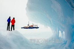 Nước biển ấm đẩy nhanh tốc độ tan băng ở Tây Nam cực