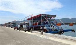 Đình chỉ giám đốc Cảng vụ Đà Nẵng sau vụ tàu chìm