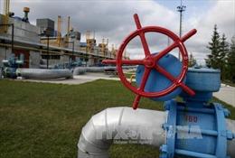 Hàn Quốc đề xuất lắp đặt đường ống dẫn khí đốt từ Nga qua Triều Tiên