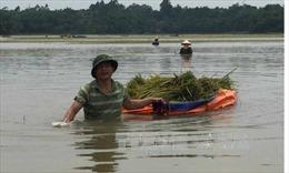 Mùa mưa bão 2016: Nguy cơ thời tiết nguy hiểm