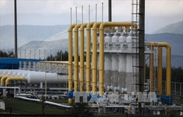 Ukraine chê khí đốt Nga quá đắt
