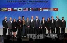 Năm cách thức giúp tổng thống sắp tới của Mỹ hồi sinh TPP