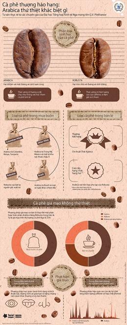 Cà phê thượng hạng Arabica khác biệt gì?
