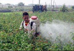 Bà con nên dùng thuốc bảo vệ thực vật đúng cách