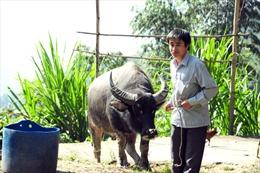 Nghị quyết 209 - Khoác áo mới cho tín dụng nông nghiệp ở Xín Mần