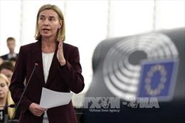 EU ra tuyên bố về kêu gọi các bên giải quyết hòa bình tranh chấp Biển Đông
