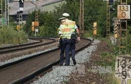 """Europol cảnh báo tấn công kiểu """"con sói đơn độc"""" gia tăng"""