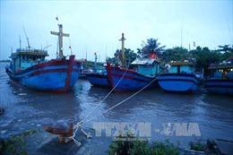 Cứu 3 ngư dân trên tàu gặp nạn khi bão về