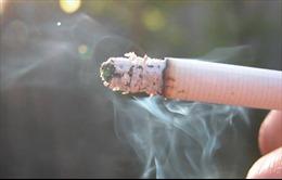 Ngột ngạt vì khói thuốc lá trên tàu hỏa