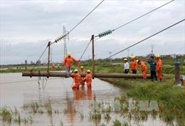 Sửa chữa lưới điện sau bão số 1, một người tử vong