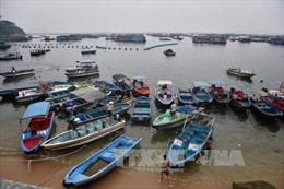 9.000 người Philippines sơ tán do bão Nida