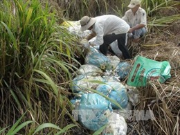 """Yêu cầu Bắc Ninh xác minh """"núi rác thải y tế giữa làng ung thư"""""""