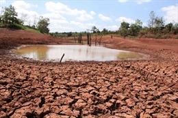 Tìm nguồn nước cho Tây Nguyên là giải pháp cấp bách