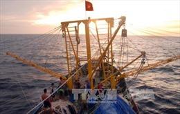Hiện trạng khai thác biển và hải đảo