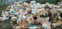Làm rõ nghi vấn doanh nghiệp xử lý môi trường chôn lấp trộm chất thải nguy hại