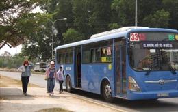 Vận tải hành khách công cộng nỗ lực kéo khách
