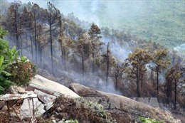 Liên tiếp cháy rừng đặc dụng Nam Hải Vân