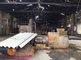 Di dời xí nghiệp Giấy đế gây ô nhiễm môi trường ở Hải Phòng