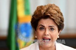 Tổng thống Brazil Rousseff khẳng định không từ chức
