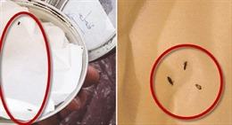 Thẩm mỹ viện Dubai thả chấy lên đầu những người tóc dày