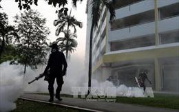 Thêm nhiều trường hợp nhiễm virus Zika tại Singapore