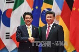 Lãnh đạo Trung Quốc và Nhật Bản hội đàm bên lề Hội nghị G20