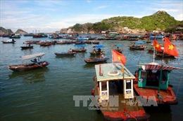Xây dựng kế hoạch thực hiện Chiến lược phát triển bền vững kinh tế biển