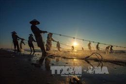 Kéo rùng - nghề truyền thống độc đáo của ngư dân xứ Thanh