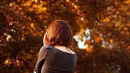 Cảm xúc mùa thu