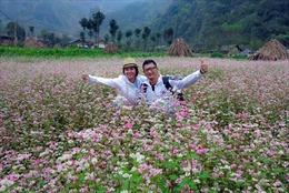 Lễ hội hoa Tam giác mạch tỉnh Hà Giang lần thứ II năm 2016
