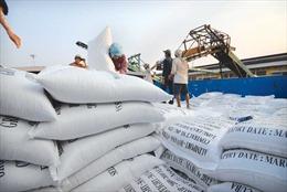 Doanh nghiệp cẩn trọng khi xuất khẩu gạo sang Mỹ