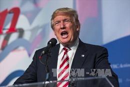 Ông Trump tiếp tục bị tố sai phạm tài chính