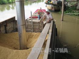 Philippines sẽ mua thêm gần 300.000 tấn gạo Việt Nam