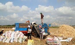 Xây dựng nông thôn mới bằng thế trận lòng dân