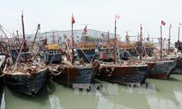 Trung Quốc kêu gọi Hàn Quốc bình tĩnh sau vụ đâm chìm tàu
