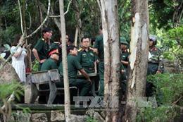 Tổ chức tìm kiếm máy bay mất tích tại 4 khu vực trên núi Dinh
